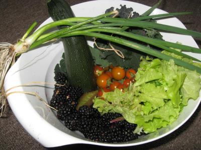 The Fruits (and Veggies) of Your Garden