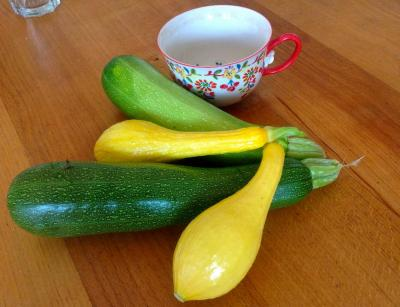 Zucchini and Crook Neck Squash from the Weber's garden