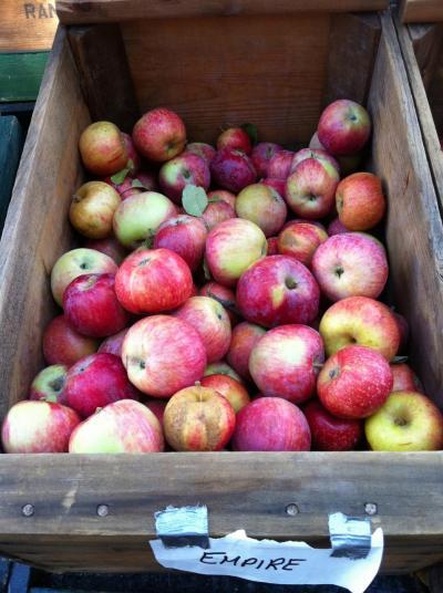 Fresh apples on display