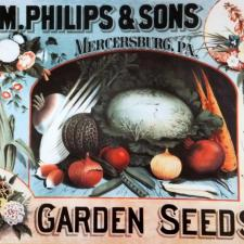 old fashioned garden seeds sign