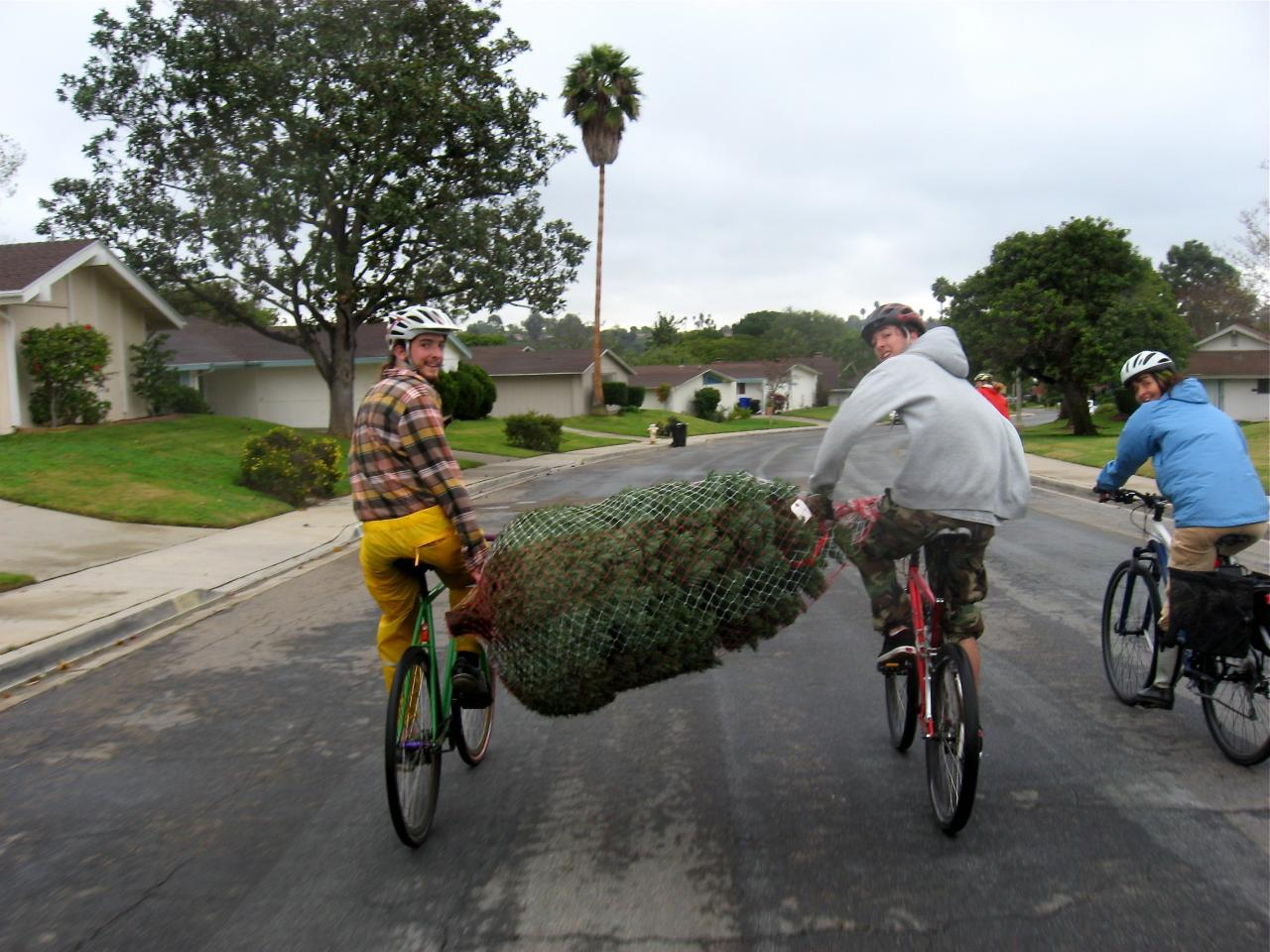 leave the car at home its more fun christmas tree transport by bike - Christmas Tree Shopping